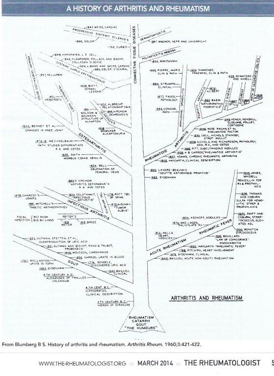 History tree rheumatology